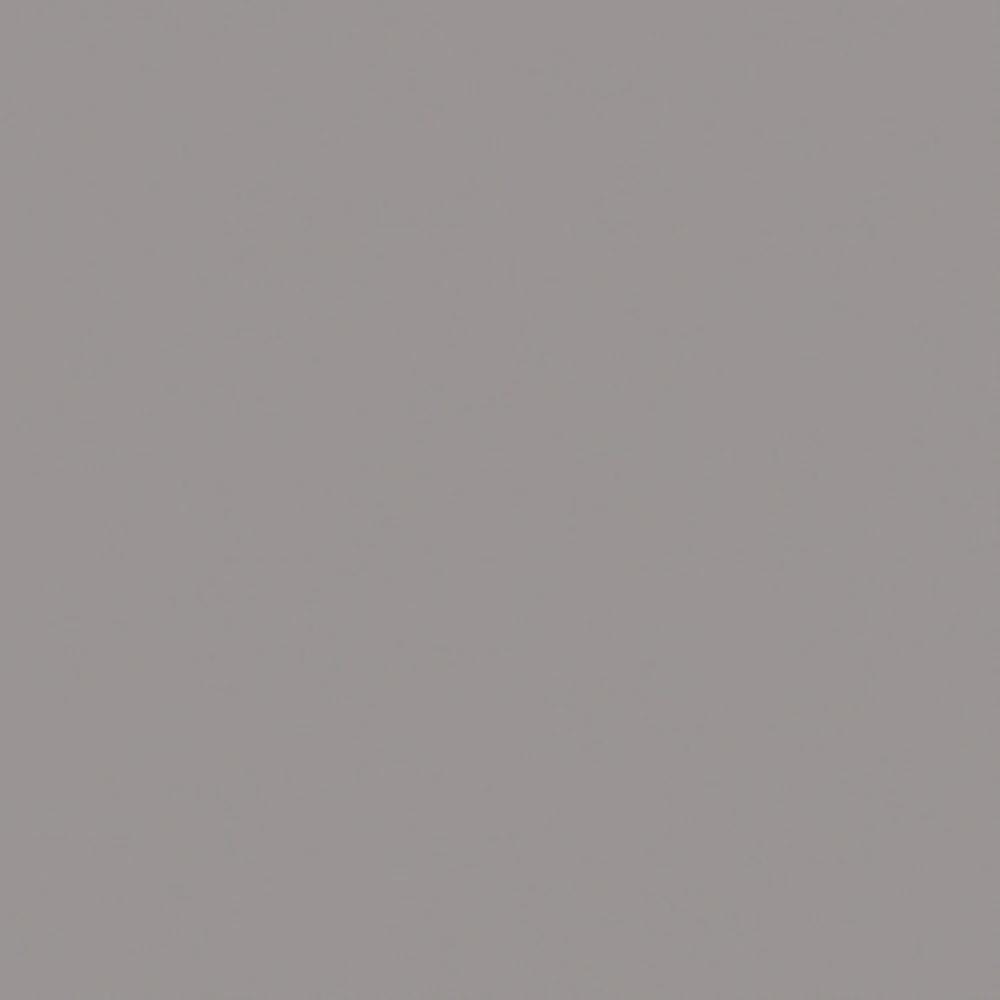 Bild von Dekor Arktisgrau U788 ST9